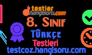 8. Sınıf Noktalama İşaretleri Testi Çöz 3 (LGS Hazırlık)